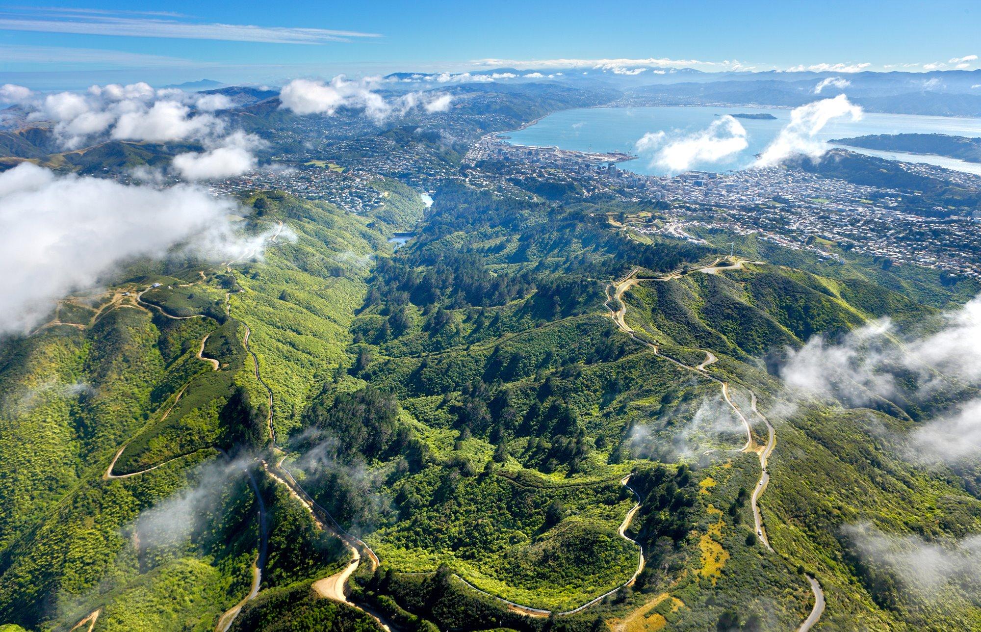 Arial view of Zealandia